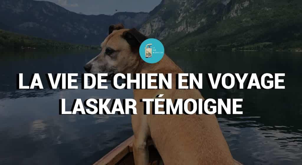 La vie de chien en voyage - Laskar témoigne